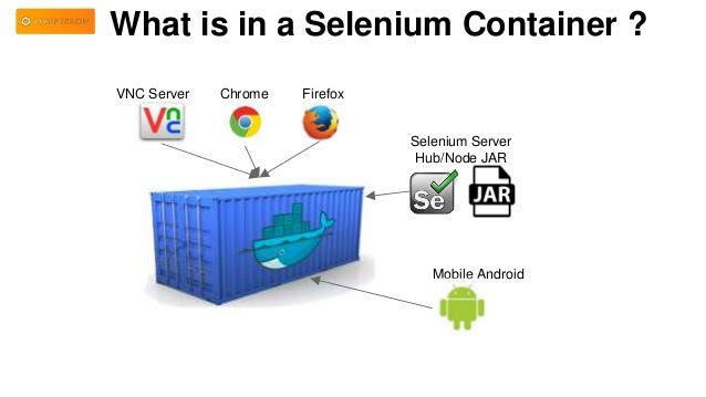 What is in a Selenium Containter?